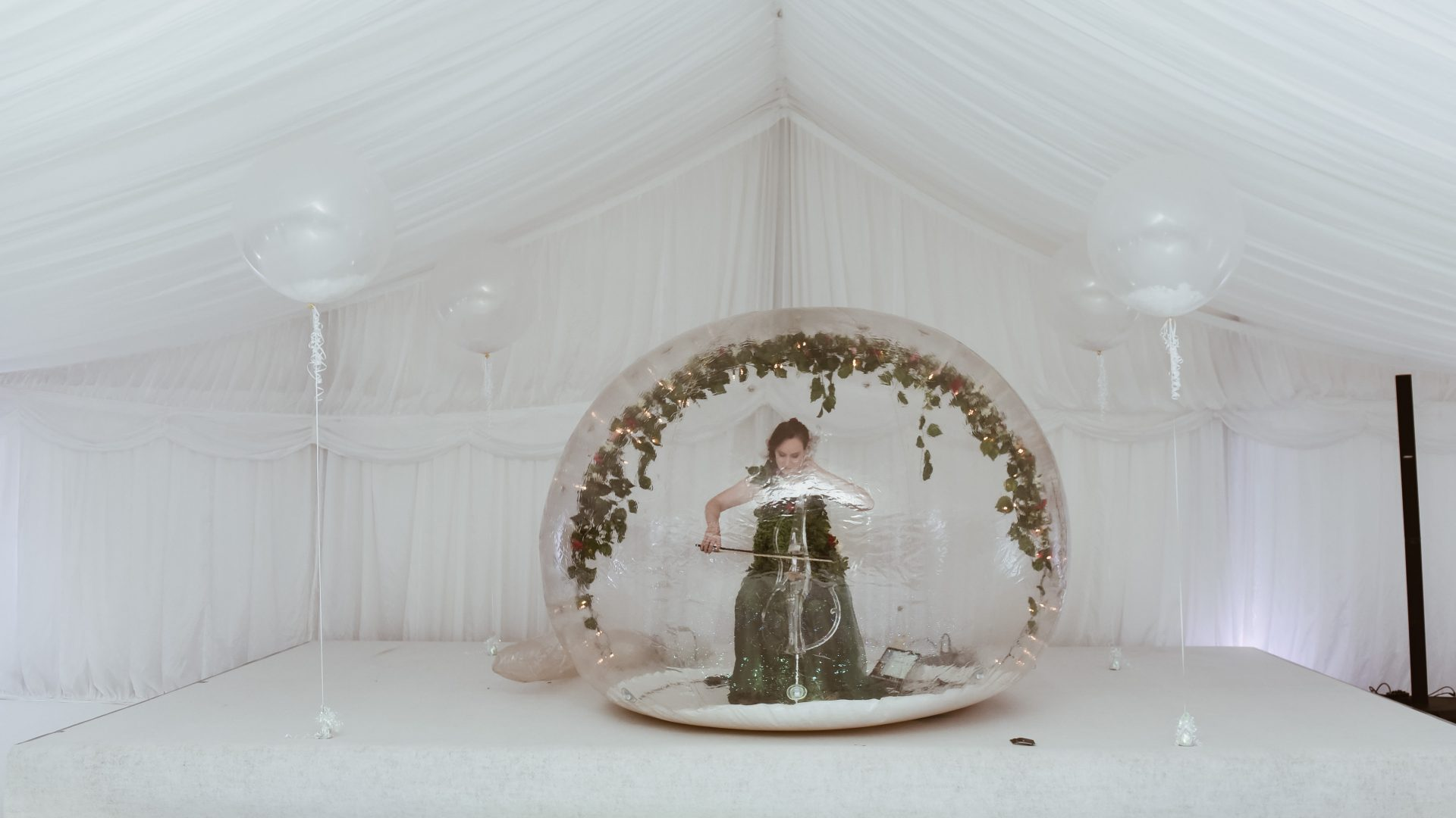 wedding-entertainer